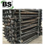 Helical Pile or Anchor and Shaft Torsion