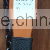 chain lever hoist popular in China