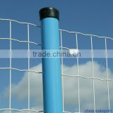6x6 reinforcing welded wire mesh fence/holland mesh                                                                                                         Supplier's Choice