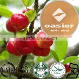 ISO Kosher Certificate Pure Natural 5% to 25% VC Organic Acerola Cherry Extract Powder