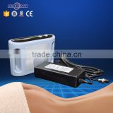 Mini Portable Criolipolisis Beauty Equipment For Home Use
