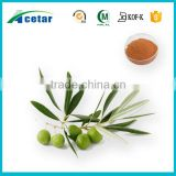 nature purity material olive leaf extract pure herb medicine