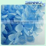 2016 Top quality real touch blue wholesale preserved flower hydrangea for wedding decoration