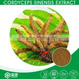 Pure Natural Healthcare Mycelia Cordyceps Sinensis Extract,Cordyceps Sinensis Polysaccharide