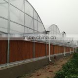 Poly film plastic greenhouse-AAA certification