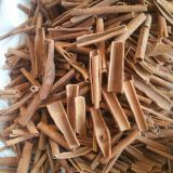 Best quality chinese cassia
