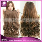 cheap 100% indian virgin human hair clip in hair extension with lace 8-26inch any color loose wave 5 clips 100g/set
