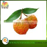 2016 Fresh Lychee Fruit pass GLOBAL G.A.P not canned
