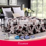 Household Super soft printed Summer air conditioning blanket flannel fleece cloudy blanket