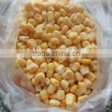 Non-GMO IQF sweet corn kernels with HALAL or KOSHER certificates