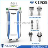 0.1 Celsius Adjustable Lipo Cryolipolysis Device Slimming Loss Weight Fat Freeze Cryo Lipo Machines Fat Freezing