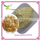 Free sample Baical Skullcap Root extract powder baicaline 95%