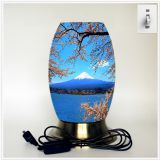 Desk lamp, creative lamp, decorative lamp, LED lamp, Japanese culture lamp (Japan001)