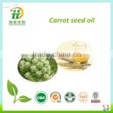 High Quality Natural Carrot Seed Oil For Cosmetic Using