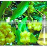 Click to inquire bulk good price nature Star Anise Oil                                                                         Quality Choice