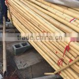 Nature Dried Bamboo Pole diameter 2-10cm Height 6m for sale