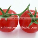 Tomato Paste 36-38% brix cold break