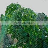 wholesale cheap price PE anti bird netting,warp knitted anti bird netting in plastic net