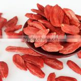 Most Popular Heathy Goji Berry Seeds Wolfberry Rich In Antioxidant Tea