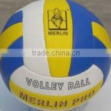 professional training and match Soft Volleyball