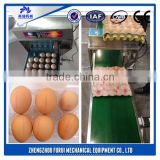 Furui brand Printing eggs direct jet printer/eggs printing hand jet printer