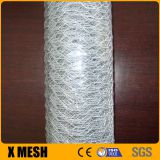Fish cage hexagonal wire mesh