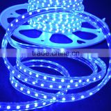 festalight new products high voltage 110V 220V indoor outdoor 60 led per mtr RGB flexible led strip light for christmas clothes