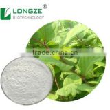 Nutritional Polygonum Cuspidatum Powder Extract with Resveratrol 10--98% by Solvent Metnod