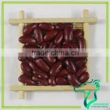 Good Brand Red Speckled Kidney Beans Dark Red Kidney Beans For Sale
