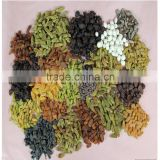dried raisin fruit manufacturer from China