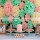 Tissue Paper Pom Poms Wedding Party Decoration, Craft Paper Flower Ball Home Decoration                                                                         Quality Choice