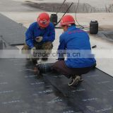 bituminous waterproof membrane with 3mm 4mm 5mm by torch