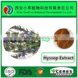 Natural Herbal Ingredient Healthcare Supplement Hyssop extract,Hyssopus officinalis extract,Hyssop extract powder