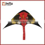 New outdoor delta wing kite