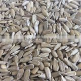 Best quality sunflower seed kernels market price