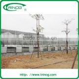 High quality commercial glass greenhouse with glass panel