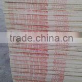 American grade birch white / natural birch birch plywood prefinished plywood for other usages