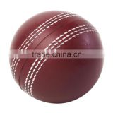 Factory high quality cricket stress ball
