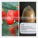 Pure natural organic Barbary Wolfberry Fruit Extract Powder