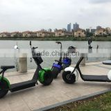 Citycoco Harley scooter hoverboard electric scooter green city bike