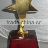 wooden award plaques with one golden star