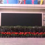 LED outdoor display  the cheapest LED display   P8