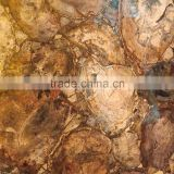 luxury natural polished big slab petrified Wood Fossil semiprecious stone                                                                         Quality Choice