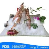 HL002 high quality frozen shaomai shrimp meat