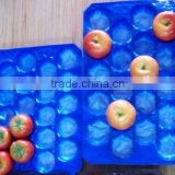 Made In China Plastic Material and Tray Type Food Grade Blister Packaging For Fruits And Vegetables