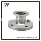 China Manufacturer SO/WN/SW/TH/LJ/BL Top Quality Customized CS/SS WN Flange                                                                         Quality Choice