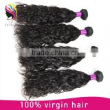"8""-30"" inch 100% brazilian virgin Remy Hair Water Wave Hair Weft"