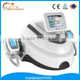 Economic unique newst cryotherapy slimming equipment