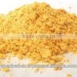 Apex Supplies Quality Mango Juice Powder / Mango Fruit Juice Powder Spray Dried / Mango Pulp Powder