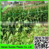 white Tomato trellis net,Knotless Hdpe uv Plant Support Netting for vegetable, Anti UV Agriculture Tomato Net